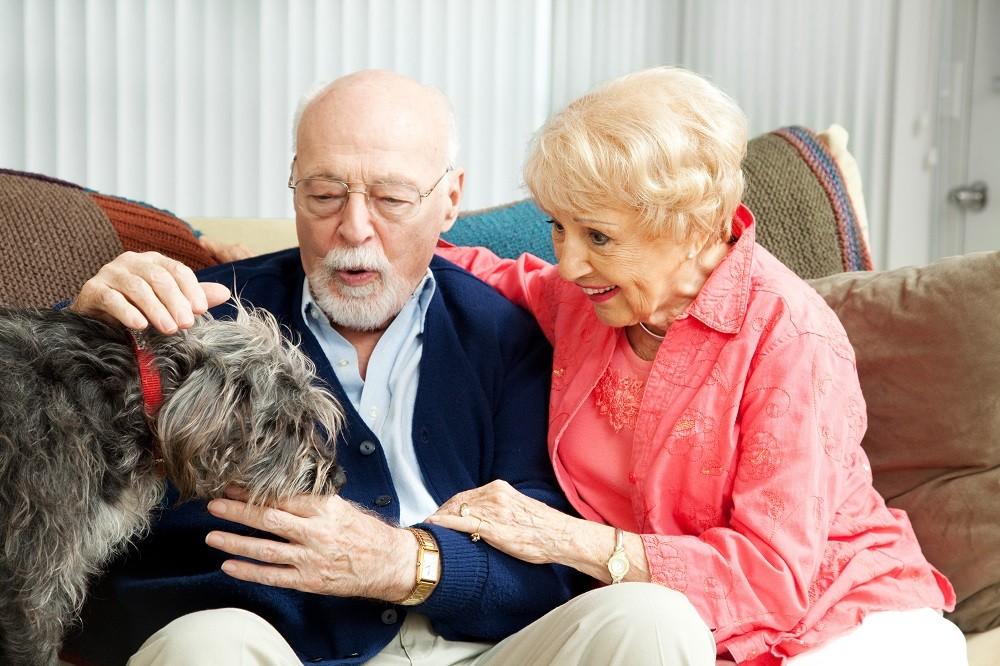 Как оформить инвалида в пансионат работа в лос анжелесе дом престарелых